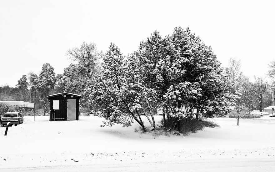 Shed and trees in snow, Uppsala, Sweden