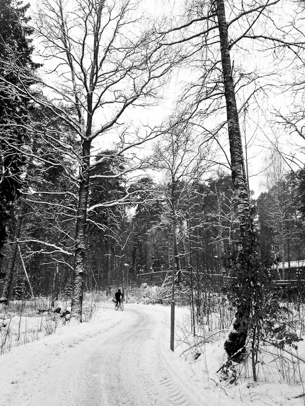 Man cycling in forest path in Uppsala, Sweden