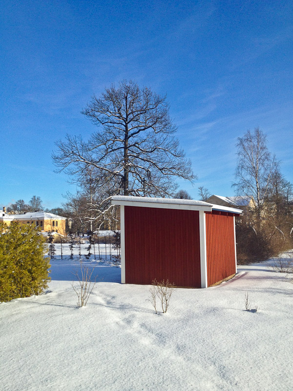 Red shed and tree in the snow, Uppsala, Sweden